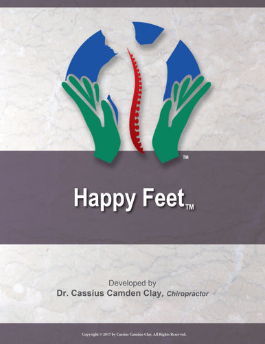 Happy Feet Book
