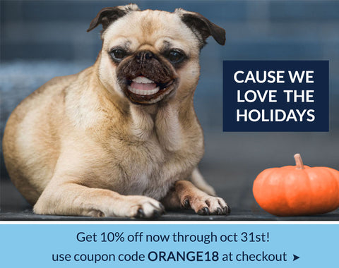 Get 10% OFF any purchase for Halloween