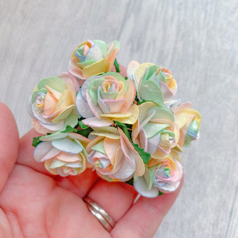 Mulberry Paper Flowers Pastel Rainbow Open Roses