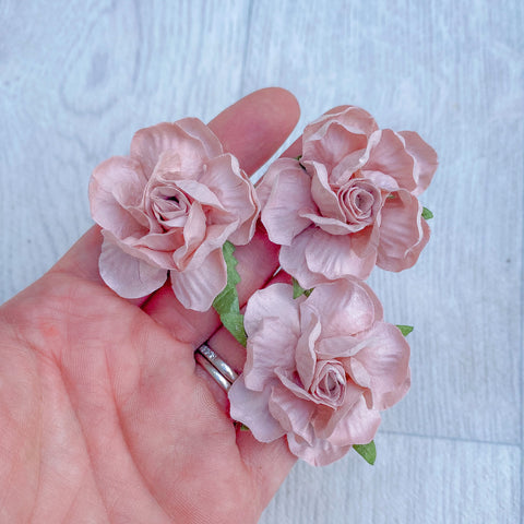 Blush Pink Country Rose Mulberry Flowers 50mm (5)