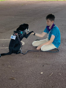 Emotional support dogs for the people of the NT