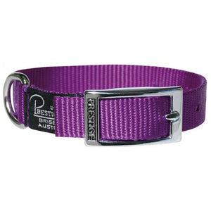 "Dog Collar Single Layer Nylon Belt Buckle Style 3/4"" Wide Prestige"