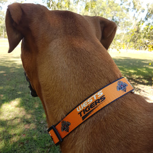 Dog Collars - NRL Footy Pets