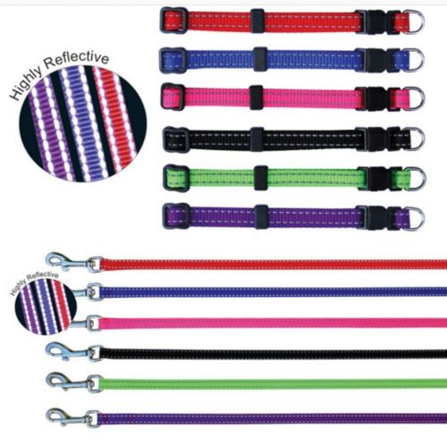 Puppy Collars & Leash Reflective Stitching Beau Pet Products