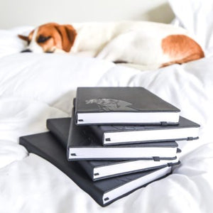 Vizsla Notebook – A5, Hardcover, Black PU Leather, 100gsm Lined Pages, Bookmark