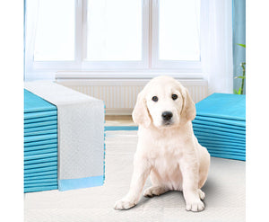 Puppy Dog Pet Training Pads Cat Toilet 60 x 60cm Super Absorbent Indoor Disposable