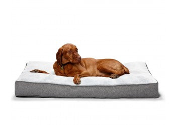 Snooza Shapes Oblong Pet Dog Indoor Bed