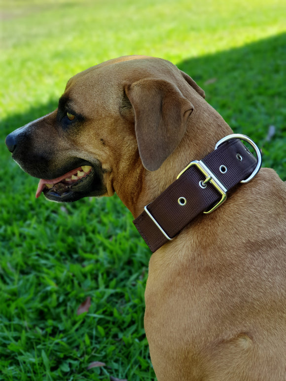 Dog Collar Tough Wide Double Layer Nylon Heavy Duty - Prestige.