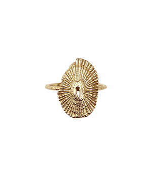 Gold Limpet Ring