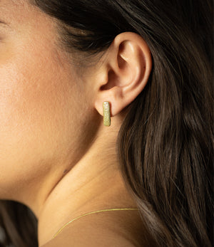 Gold Mollusk Earrings