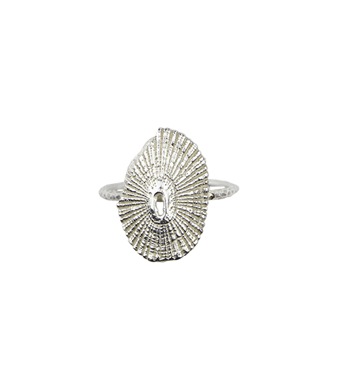Silver Limpet Ring