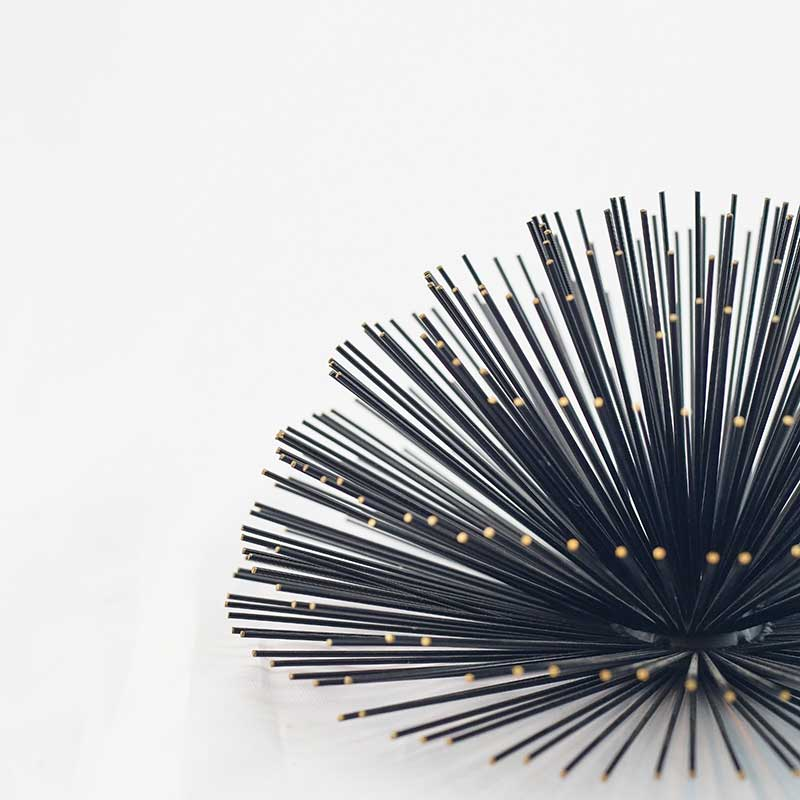 Décor | Black and Gold-Tipped Spikes Sea Urchin Décor (Small)