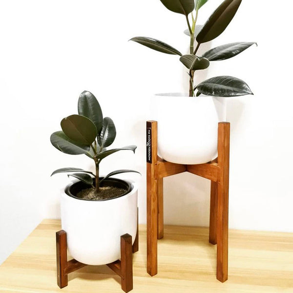Modern Pots Ph Wooden Stand - Mahogany Finish