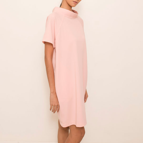 Nique Dress in Blush