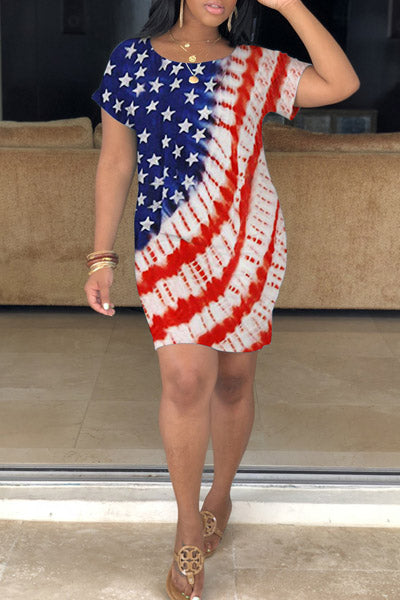 Flag Printed Dress