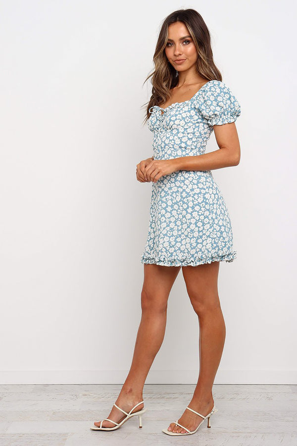Ducky Dress - Blue
