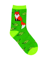 Fox, Socks, Red Fox, Furry, Tail, Night Creature, Creature, Animals