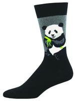 Panda, Bear, Furry, Relax, Bamboo, Chinese, Animals, Wild, Panda Bear