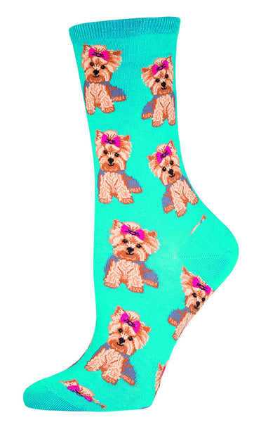 Pretty Yorkies, Dogs, Barks, Pets, Yappie, Bows, Man's BFF, Dog Mom