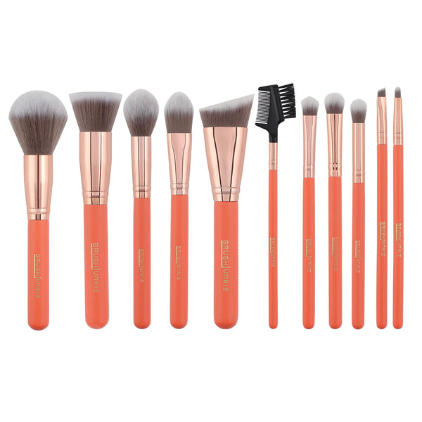 11pc CORAL CRUSH BRUSH SET