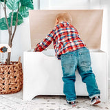 Modern Toy Box - White w/ Natural