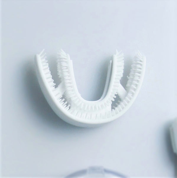 Mouthpiece Brush (L)