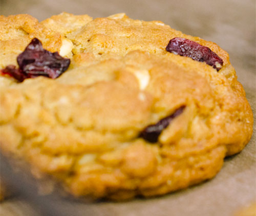 Reva's Outrageous Oatmeal Cranberry White Chocolate Chip