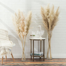 Quality Preserved Natural Dried Pampas Grass Stems-Nine Zen