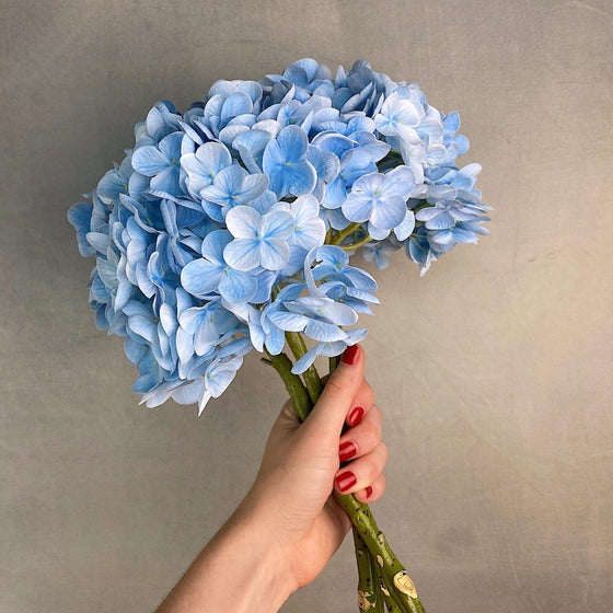 Real Touch High Quality Hydrangea - Blue-Nine Zen