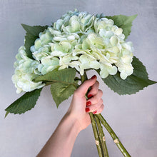 Real Touch High Quality Hydrangea - Light Green-Nine Zen