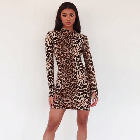 Winter Leopard Dress