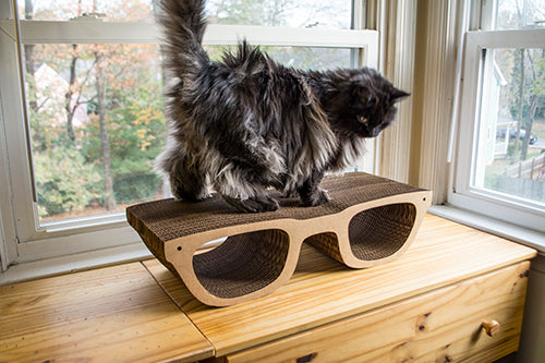 Hip Glasses Cat Scratcher