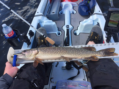 Pike, Driedmeat lake, Kayak Fishing; A Synopsis.