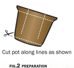 Illustration of where to score a pulp pot