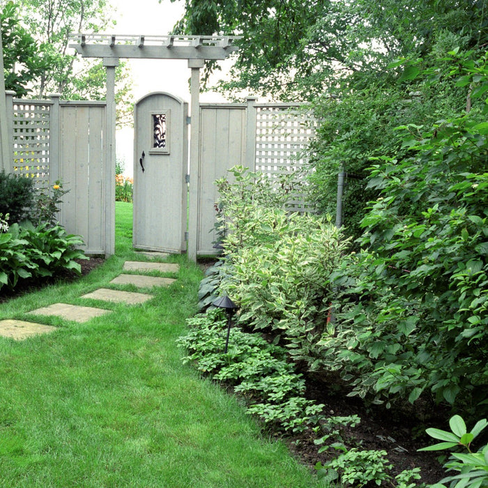 Shade Garden with Gate