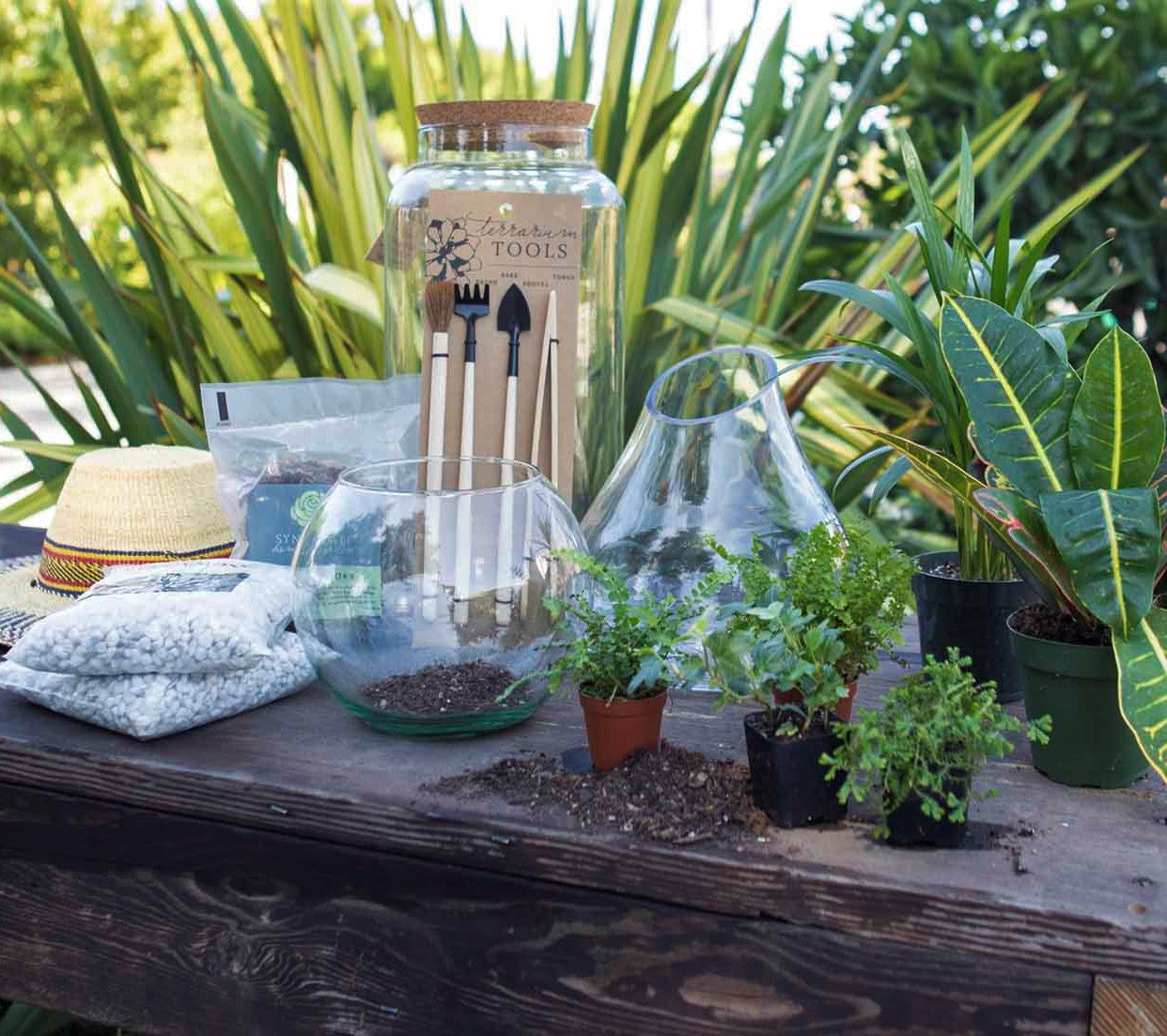 Table Showing Terrarium Supplies