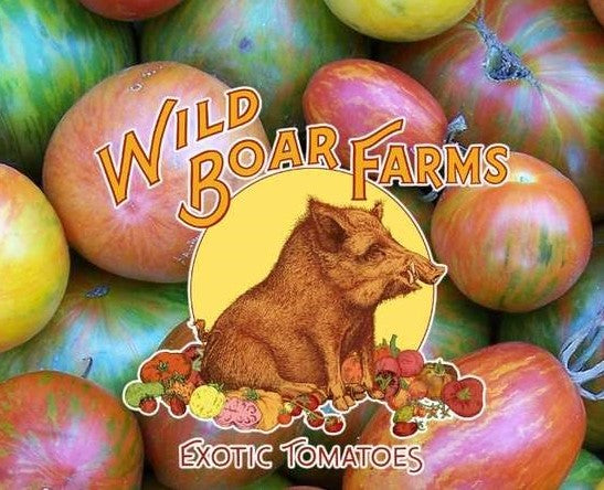 Wild Boar Farms: Tomato Varieties for 2020