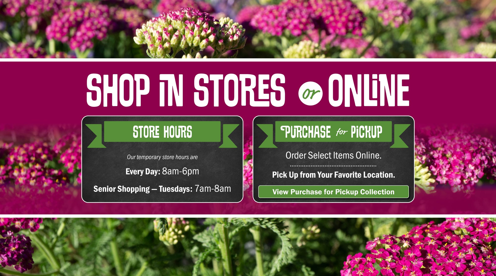 Store Hours: Every Day 8am to 6pm. Senior Shopping Tuesdays 7am to 8am. Or Shop Online via Purchase for Pickup