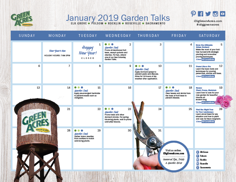 JANUARY 2019 Calendar of Events