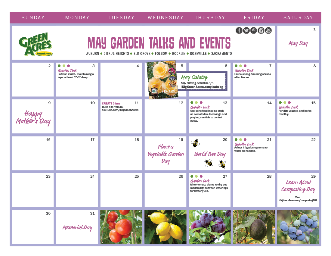 MAY 2021 Calendar of Events