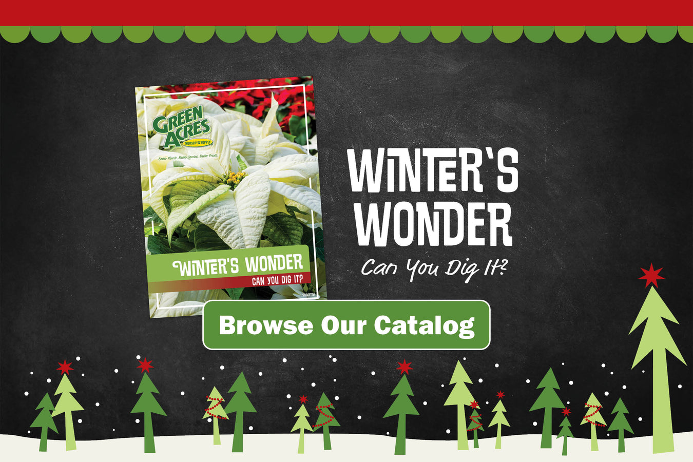 Winter's Wonder. Can You Dig It? Browse our winter catalog.