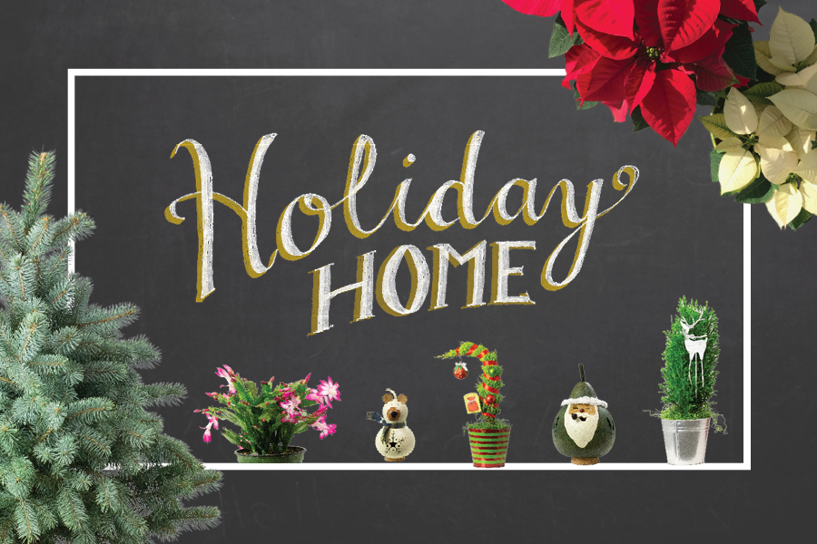 Holiday Home for holiday plants and decor