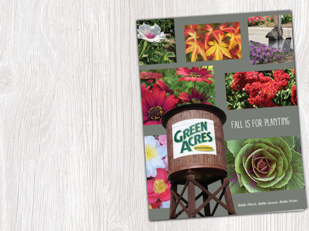 Our Fall Catalog: Fall Is For Planting