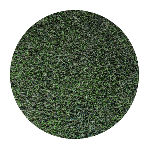 Delta Bluegrass Company 90/10 Tall Fescue