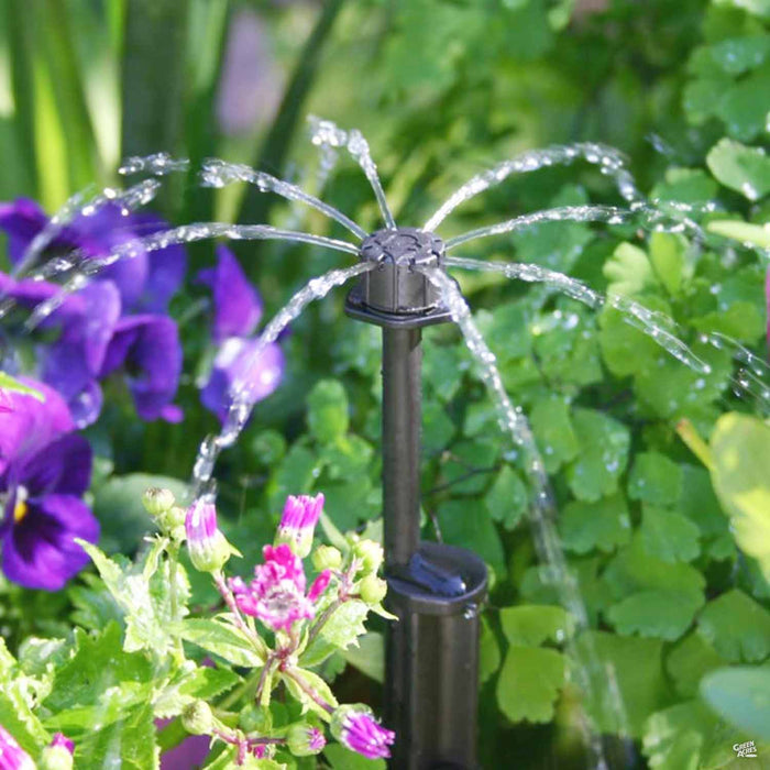 Irrigating with Antelco Shrubbler 360-degree spike