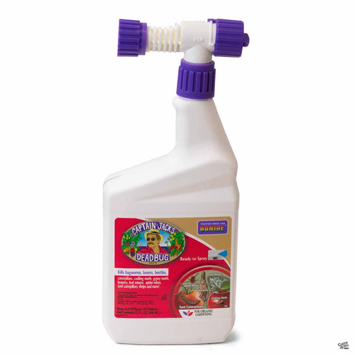 Bonide Dead Bug Brew Quart Ready to Spray