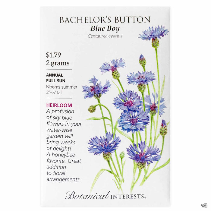Botanical Interests Seeds Bachelor's Button Blue Boy