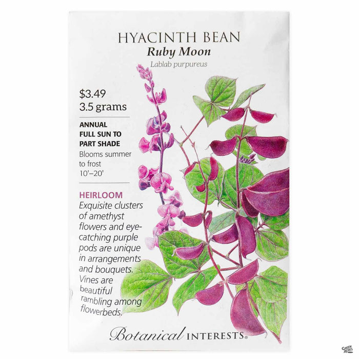 Botanical Interests Seeds Hyacinth Bean Ruby Moon