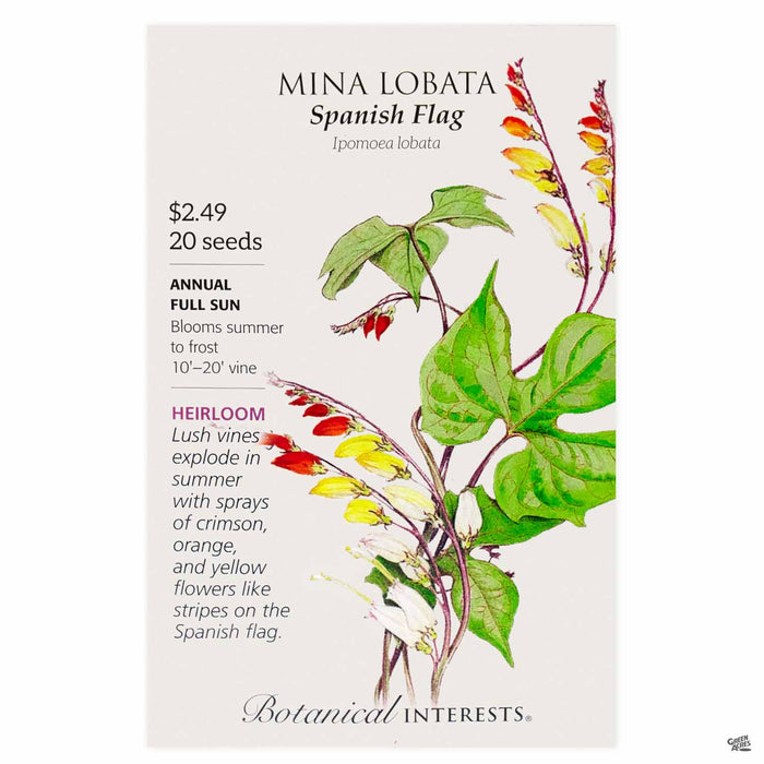 Botanical Interests Seeds Mina Lobata Spanish Flag