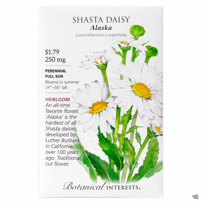 Botanical Interests Seeds Shasta Daisy Alaska